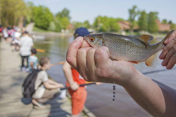 Valtakunnallista kalastuspäivää vietetään 25. elokuuta.